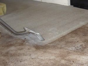 Deep Hot Water Extraction by Whole House Carpet Cleaning